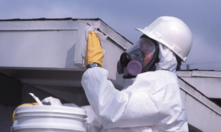 San Diego Asbestos, Lead Abatement, Mold Remediation, Air Duct Cleaning, Bed Bugs Removal Services